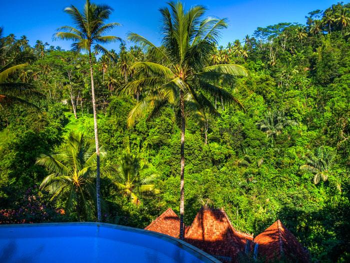 infinity pool ubud hotel bali